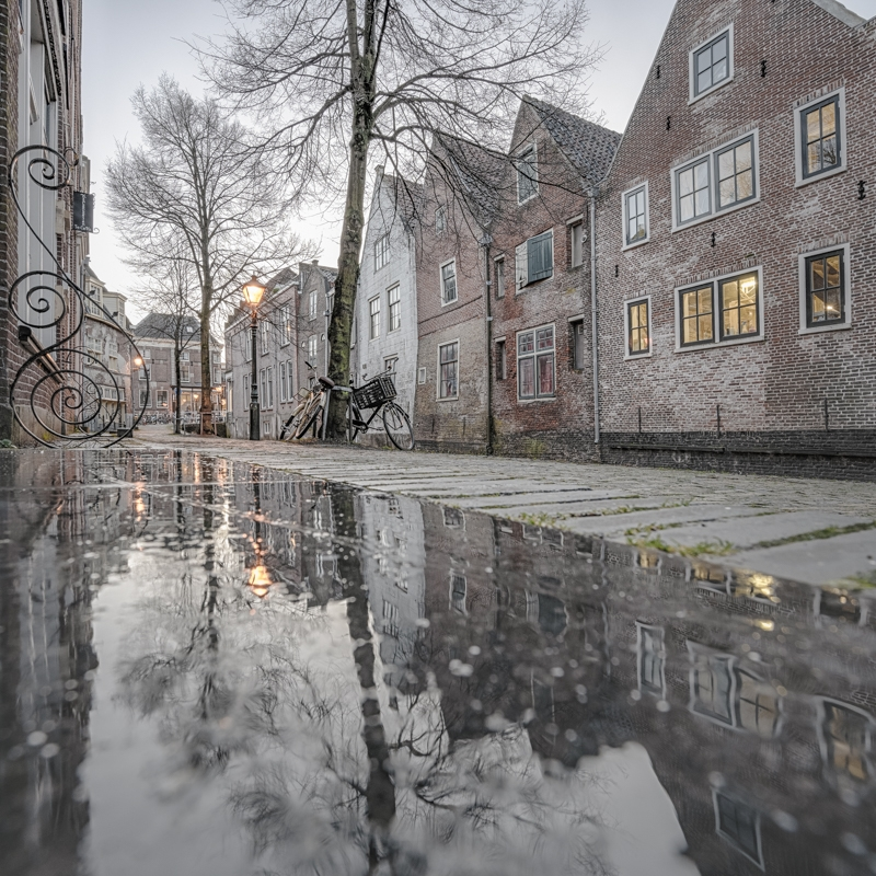 Kooltuin Alkmaar Reflectie