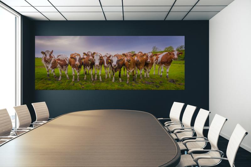 Vergaderzaal_fotokunst_koeien