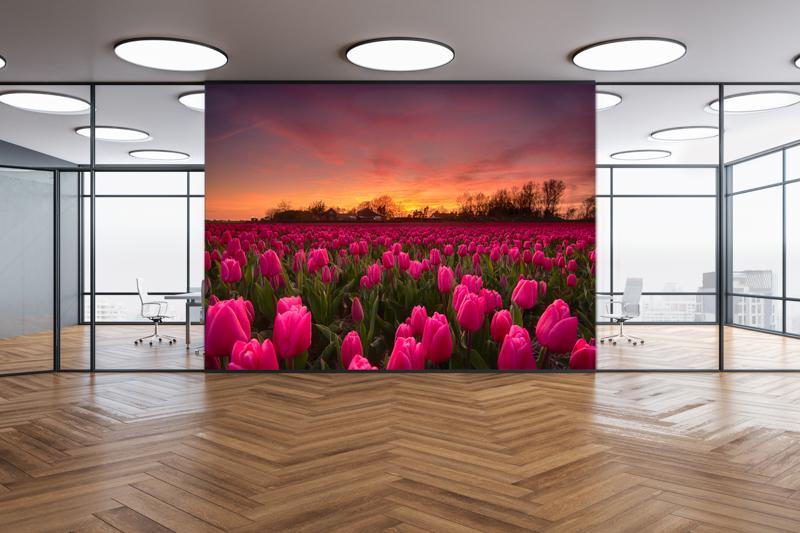 Fotokunst Kantoor Tulpen